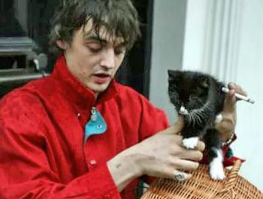 Doherty and his cat