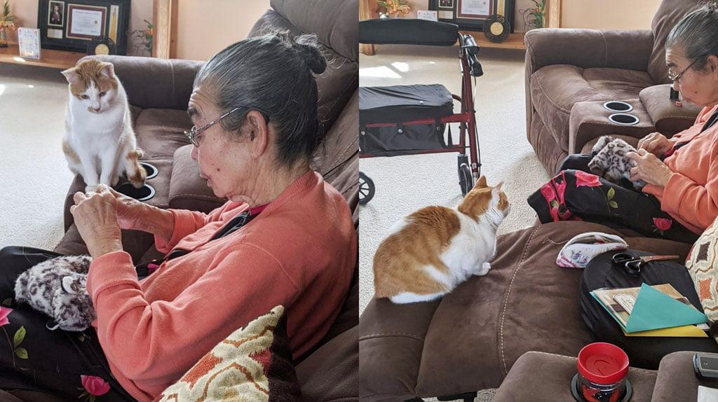 Grandma repairs cat's favourite toy