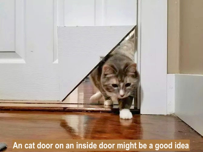 Cat door on an inside door might be a good idea