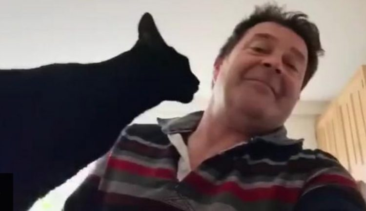 Man thinks his loving cat is vicious