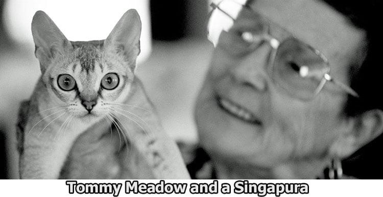 Tommy Meadow and Singapura