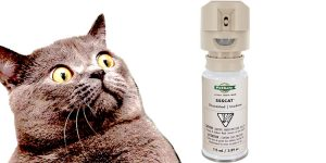 Cat deterrent. Motion activited gas cannister