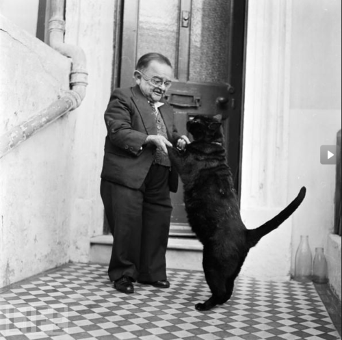 Picture of the world's smallest man 1956 with his black cat