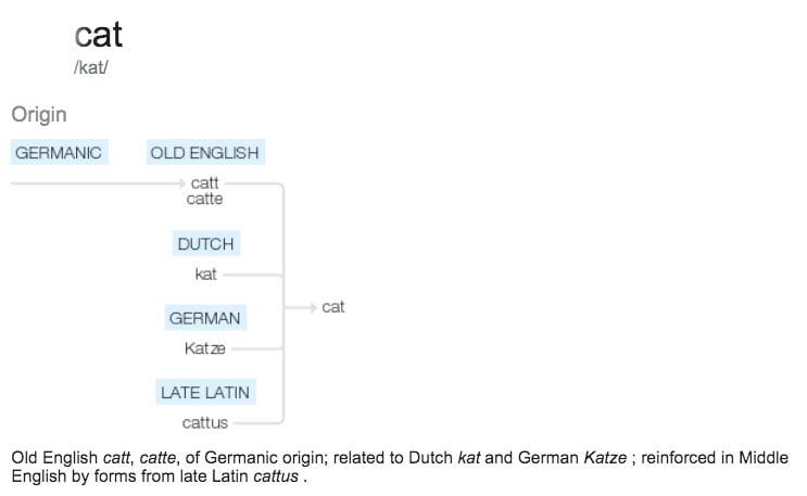 Origin of word cat