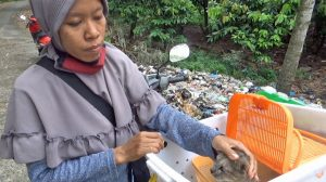 Salmiati a cat rescuer in Indonesia