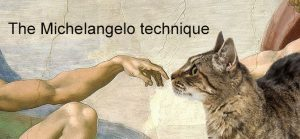 The Michelangelo technique for humans greeting cats