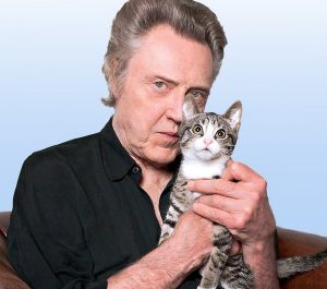 Christopher Walkern loves cats