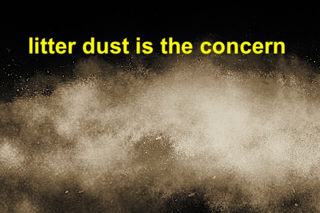 Litter dust is concerning