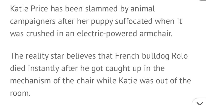 Twitter post about Katie Price's puppy