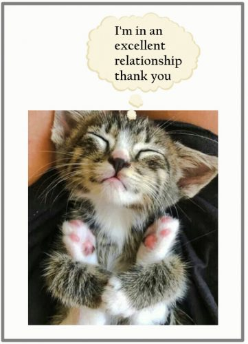 Relationship versus ownership re: domestic cat