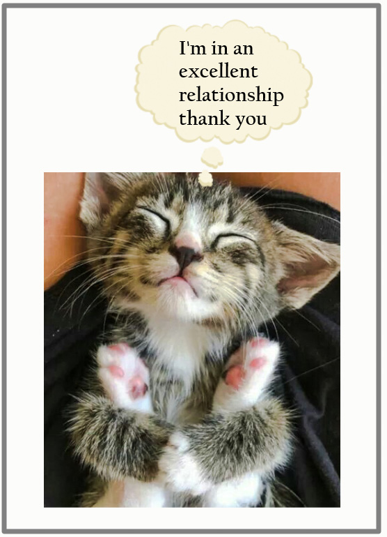 Relationship versus ownership re: domestic cat