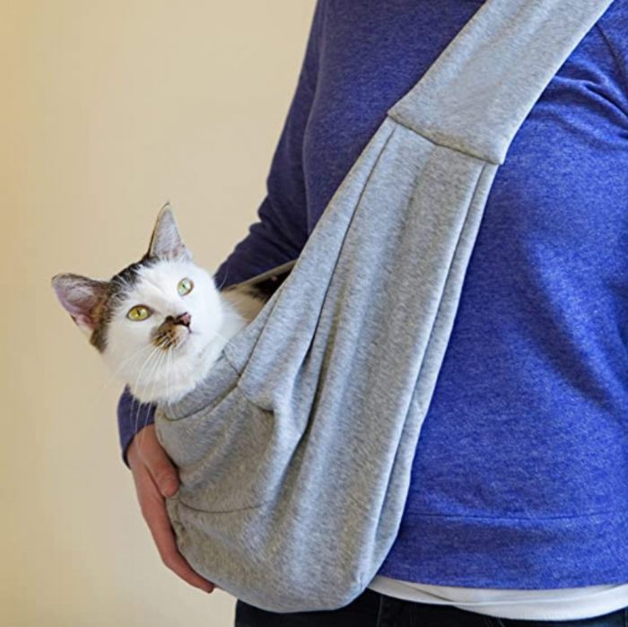 Cat in carrier sling