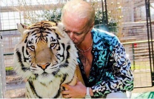Joe Biden as Joe Exotic