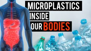 Plastic inside our bodies