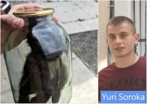 Yuri Soroka and the kitten he placed in a glass jar and sealed the top