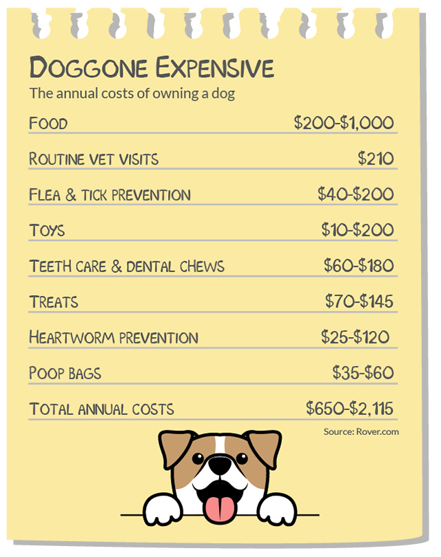 Annual cost of owning a dog in the USA