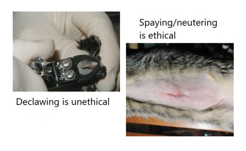 Declawing is unethical and de-sexing is ethical