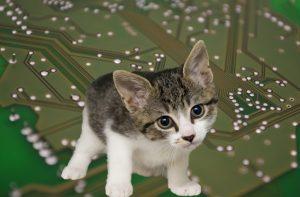 AI in veterinary medicine