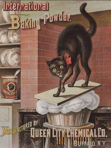 Advertisement for International Baking Powder c 1885