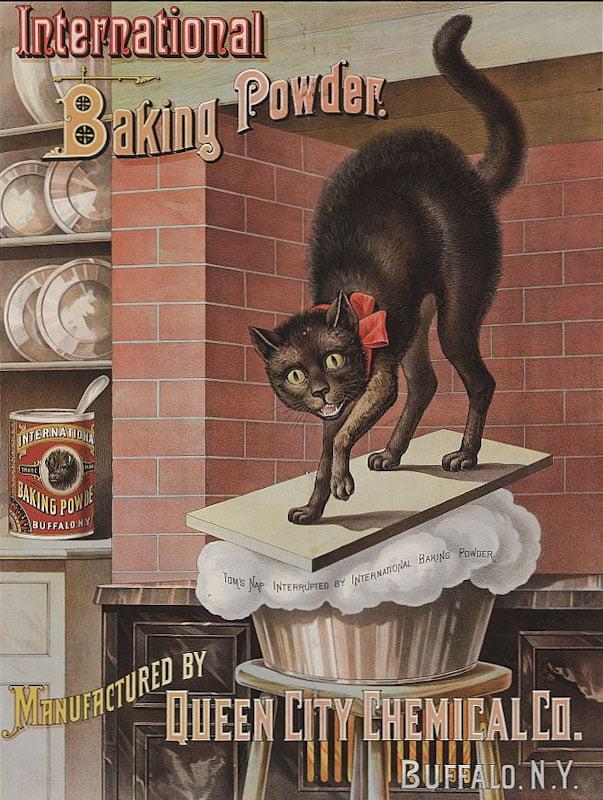 Advertisement for International Baking Powder c 1885