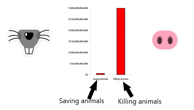 Different spent on saving animals compared to killing animals in USA