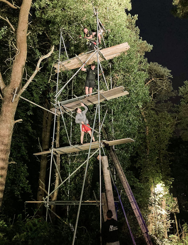 Scaffolders build tower to rescue cat stuck in tree