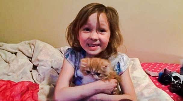 Birthday girl with her Persian kitten