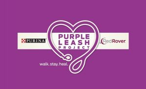 Purina Purple Leash Project and RedRover team up to help victims of domestic violence