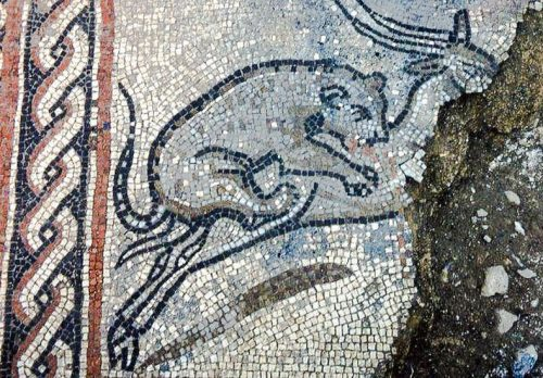 4th century Roman mosaic of leopard attacking an antelope from Dorset, UK