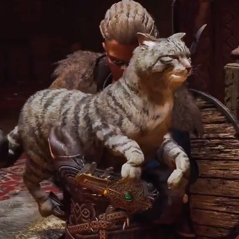 Assassin's Creed Valhalla showing a silver tabby domestic cat the size of a lynx or bobcat! Screenshot.