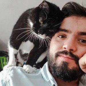 Cat loves man