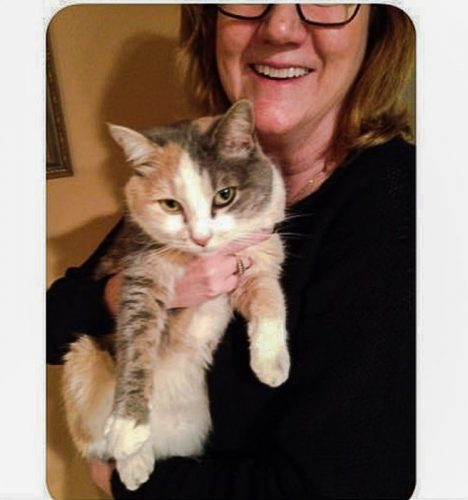 Woman mistook a rabbit for her cat