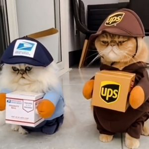 Eric and Ollie mail delivery boys