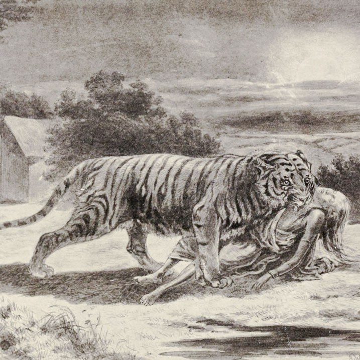 Man-eating tiger of the past