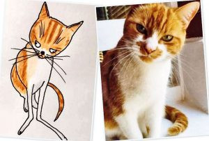 Phil Heckels' drawing of a cat
