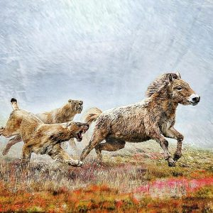 Sabre-toothed cats genetically suited to endurance hunting
