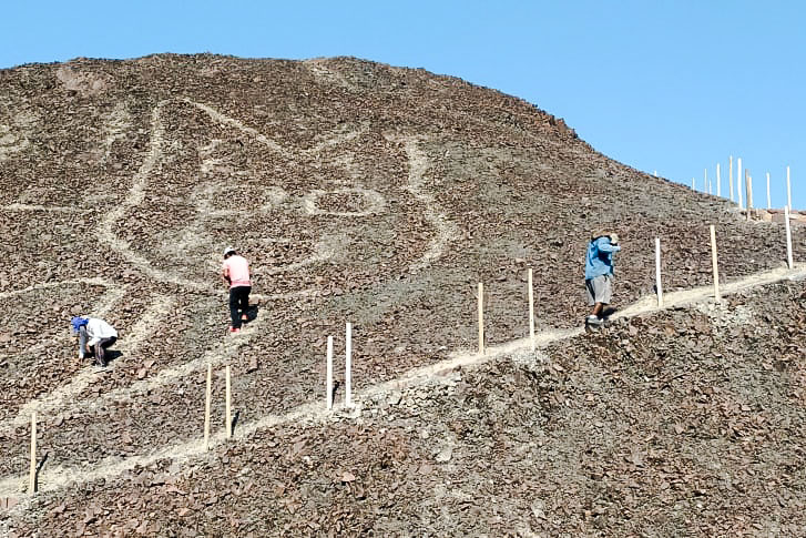 Ancient geoglyph of a cat on side of hill in Peru