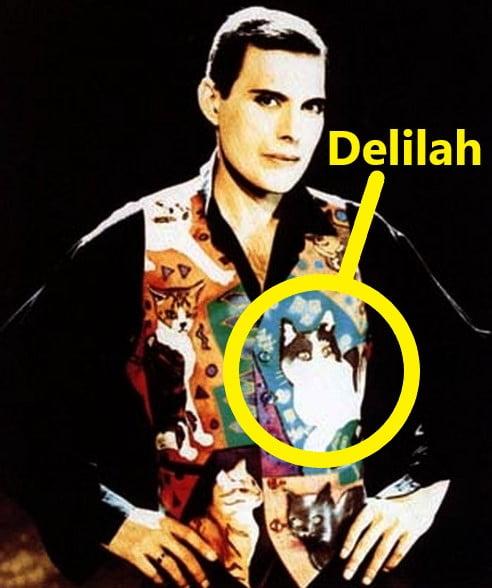 Delilah on Freddie Mercury's waistcoat