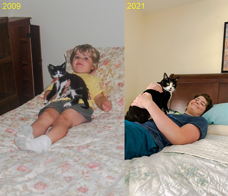 Boy and kitten and man and cat 12 years apart