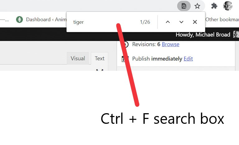Ctrl F search box to find words on a page