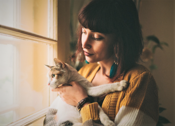 Do cats understand when their is a problem in their relationship with yo?