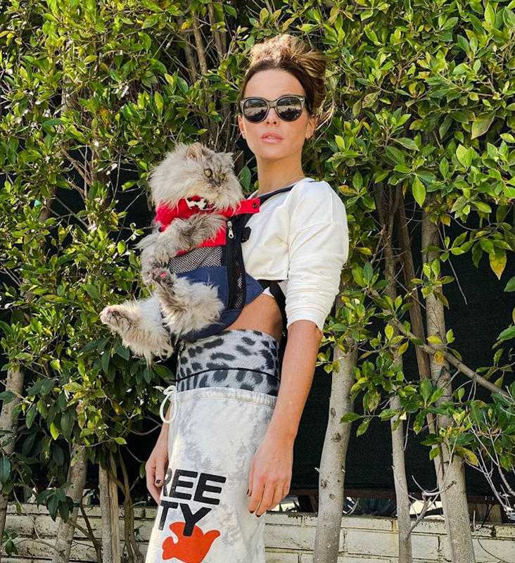 Kate Beckinsale and Clive her flat-faced Persian one of 2 that she lives with