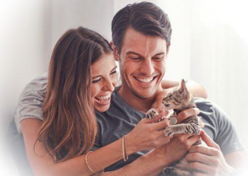 Love between cat lovers