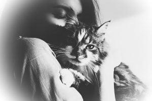 Loving a cat