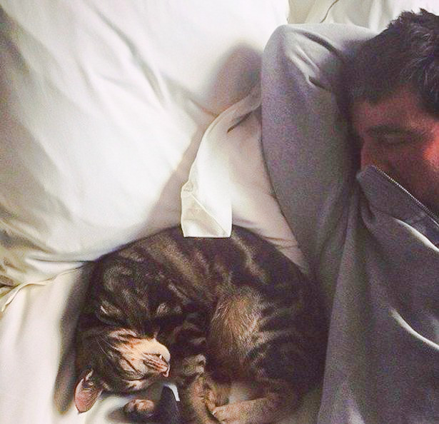 Noel Gallagher and the family cat