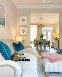 Picture of a domestic cat in an English home