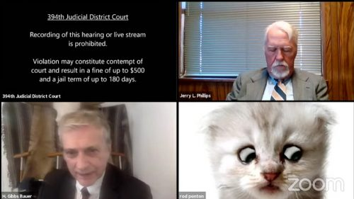 Virtual court hearing in America included the image of a cat respresenting one of the lawyers