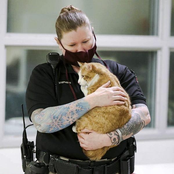 Lt. Jennifer Stevens with a foster cat Sully inside Laramie County jail