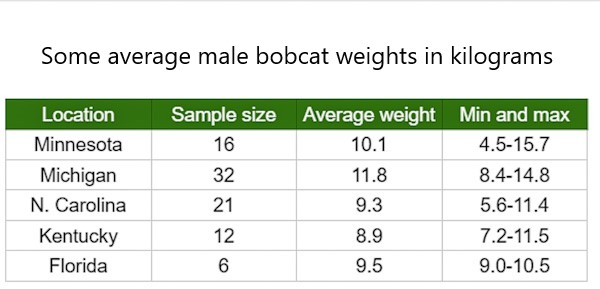 Male bobcat weights in kg