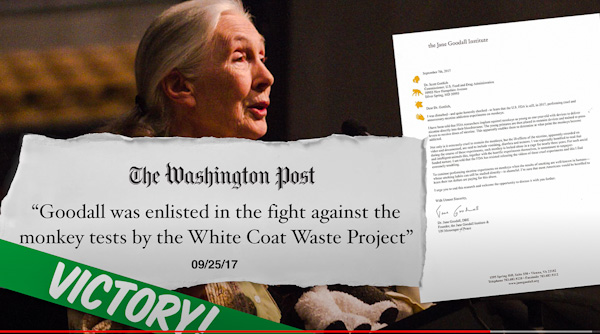 White Coat Waste Project's victory with the assistance of Jane Goodhall, the primatologist